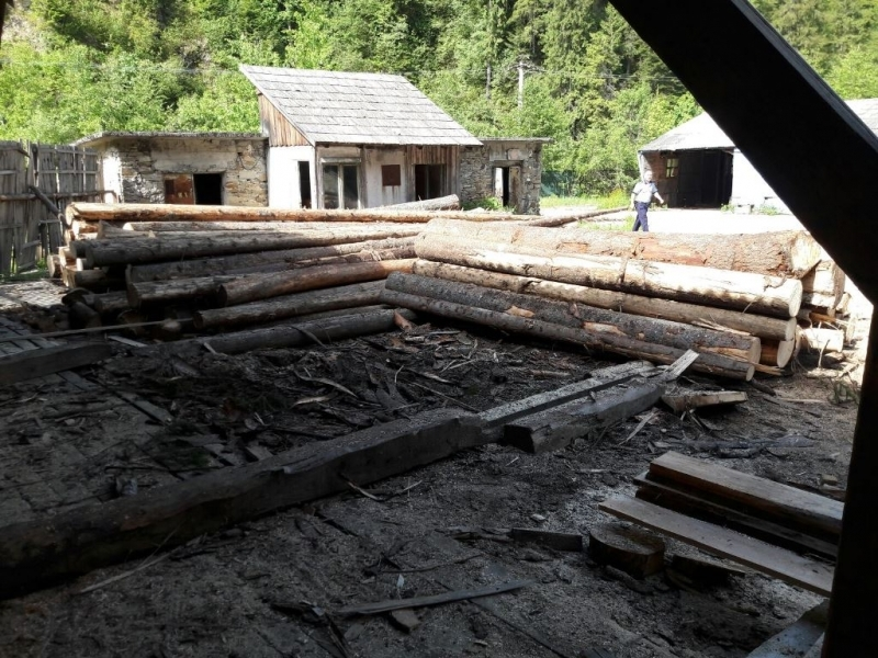 Material lemnos confiscat în Vișeu de Sus